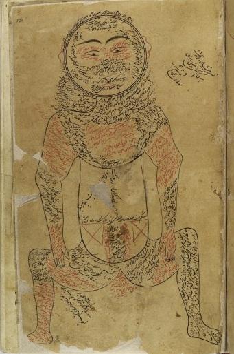 L0013313 Muscular system, Avicenna, Canon of Medicine