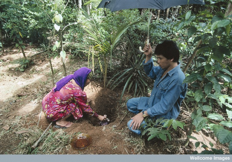 N0026580 Life in rural Indonesia. Burying the placenta
