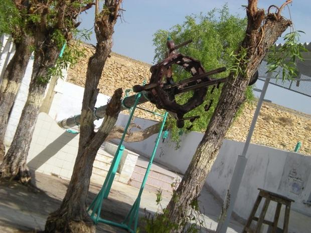 Amir Pir 046s