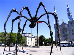 The Maman statue, a 9.144 m or 30 ft bronze cast of a spider located at the National Gallery of Canada.