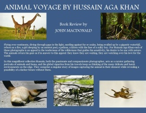 "A collage of photos from Prince Hussain's ""Animal Voyage"" with an excerpt from John MacDonald's review of the book. Image:  Simerg. Copyright."