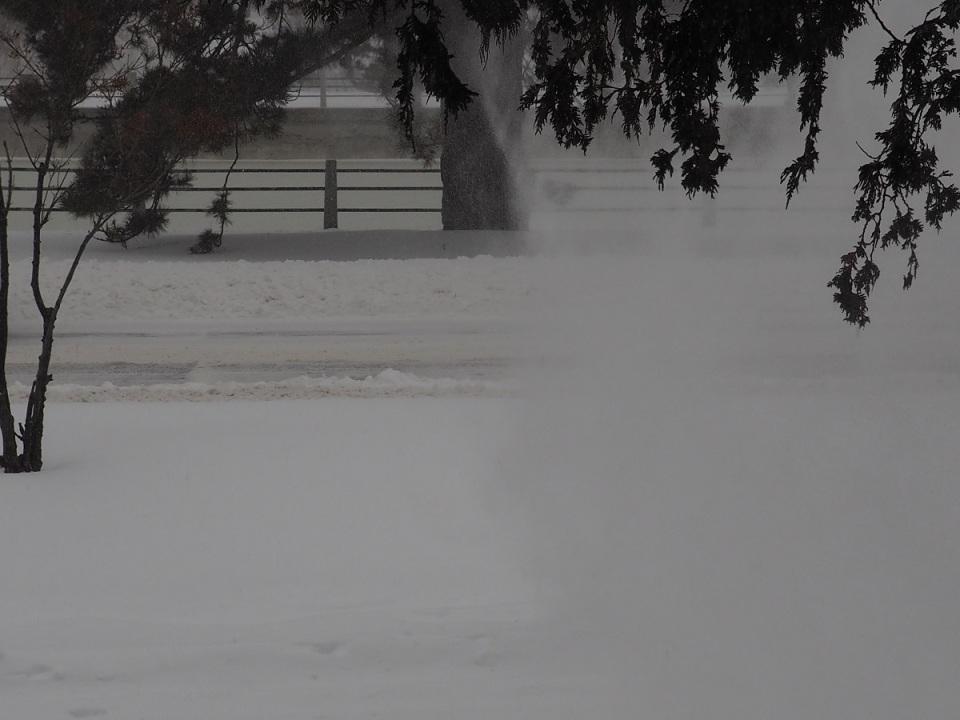 Ottawa Winter Day, December 29, 2015