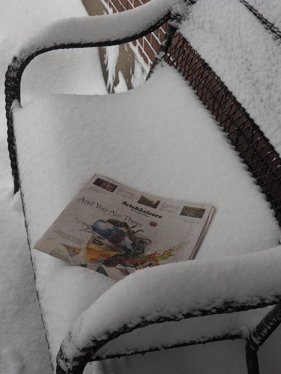Ottawa Winter, December 29, 2015