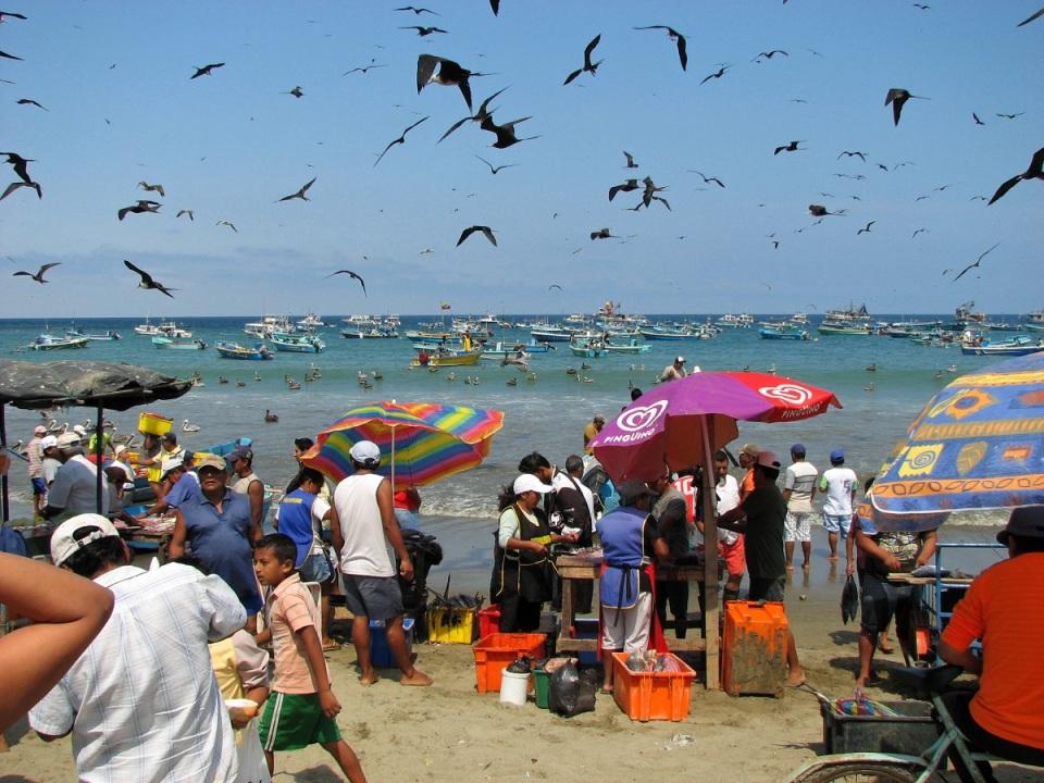 fresh-fish-catch-puerto-lopez-ecuador