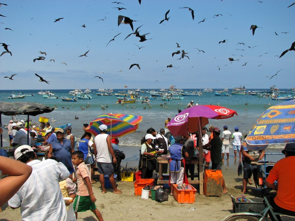 fresh-fish-catch-puerto-lopez-ecuador