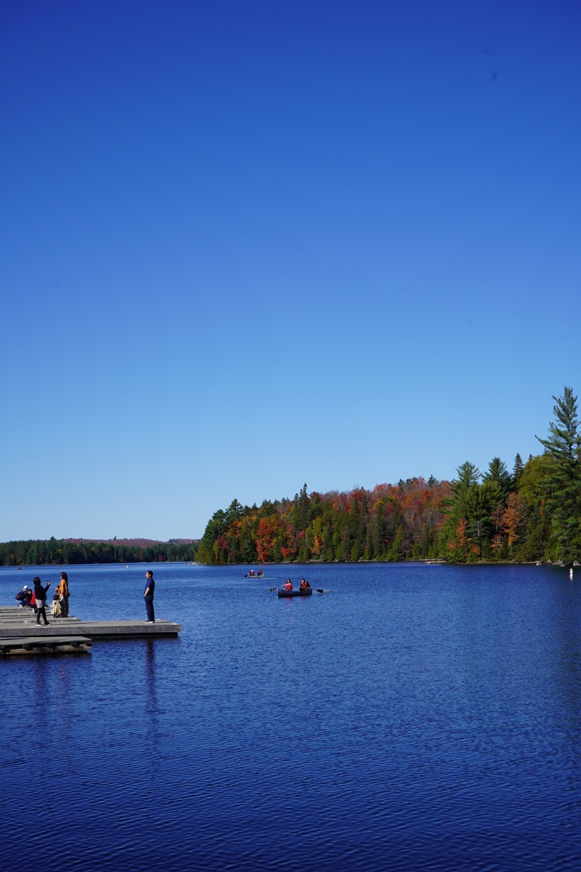 Canoe Lake, Algonquin Park, Ontario, Canada, Autumn 2019