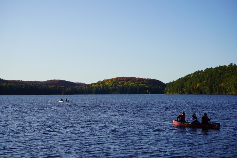 Canoes on Lake Opeongo, Algonquin Park, Simergphotos, Nurin Merchant Sony Alpha A7