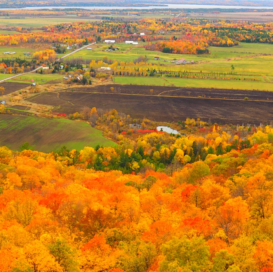 2019 Fall Colours Ottawa and Gatineau, Canada.