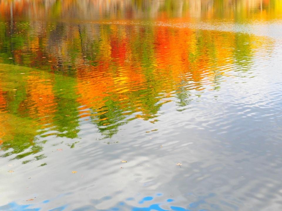 Pink Lake, Gatineau Park Foliage
