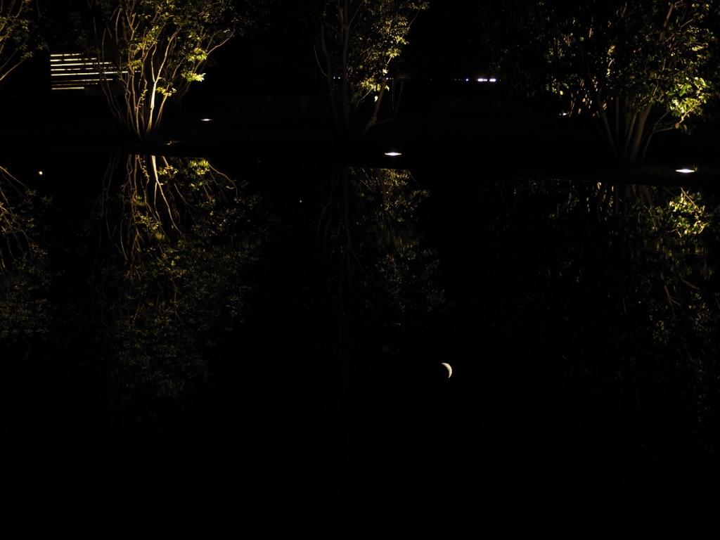 8:30 -10:30 PM: The Crescent Moon over the Aga Khan Park on July 24, 2020. Photo: Malik Merchant / Simergphotos.