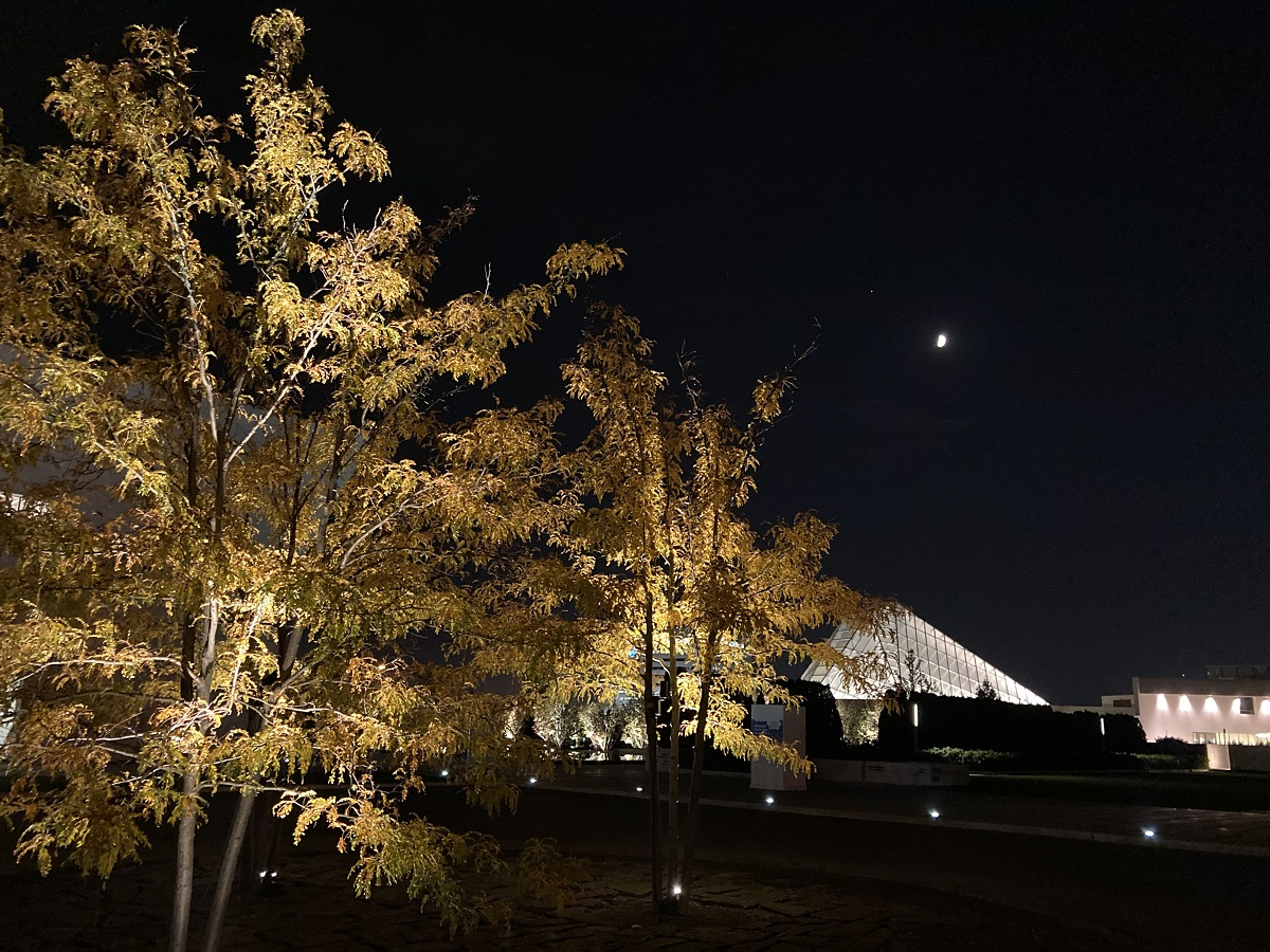 Fall colours at Aga Khan Park, and Waxing Moon above the dome of the Ismaili Jamatkhana on Wynford Drive Toronto.