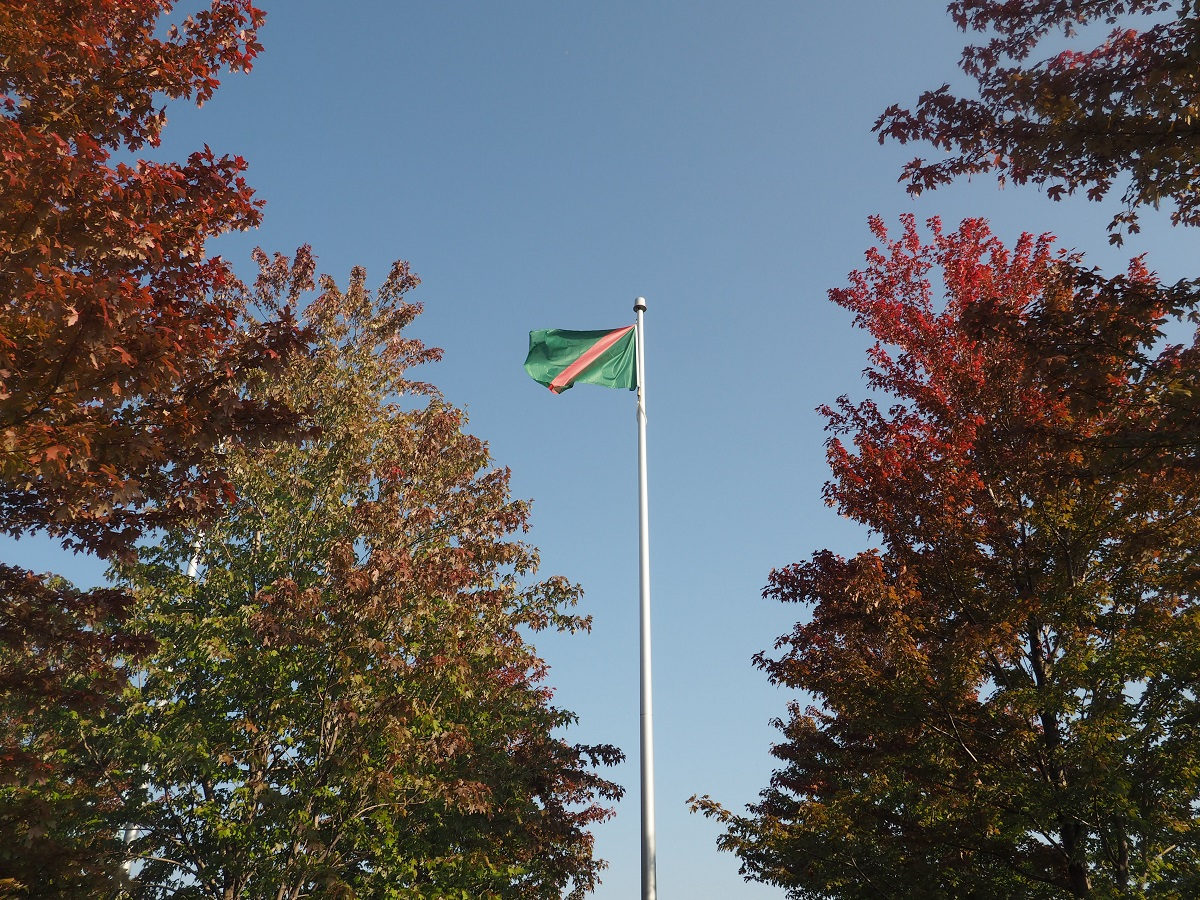 Flag of Ismaili Imamat by fall coloured trees