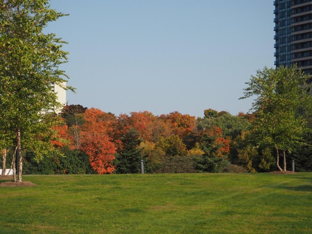 Fall colours Aga Khan Park