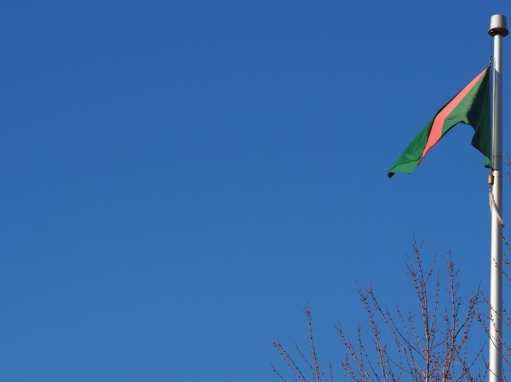 Ismaili Imamat Flag