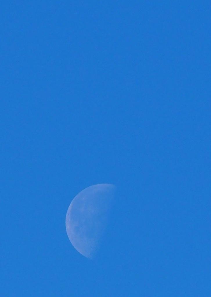 Third quarter daytime moon Aga Khan Park Simerg