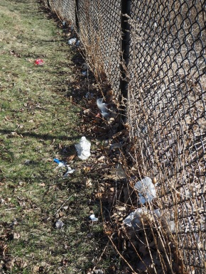 Garbage at Aga Khan Park, Photo of the Day. Malik Merchant, Simerg, Simergphotos.com