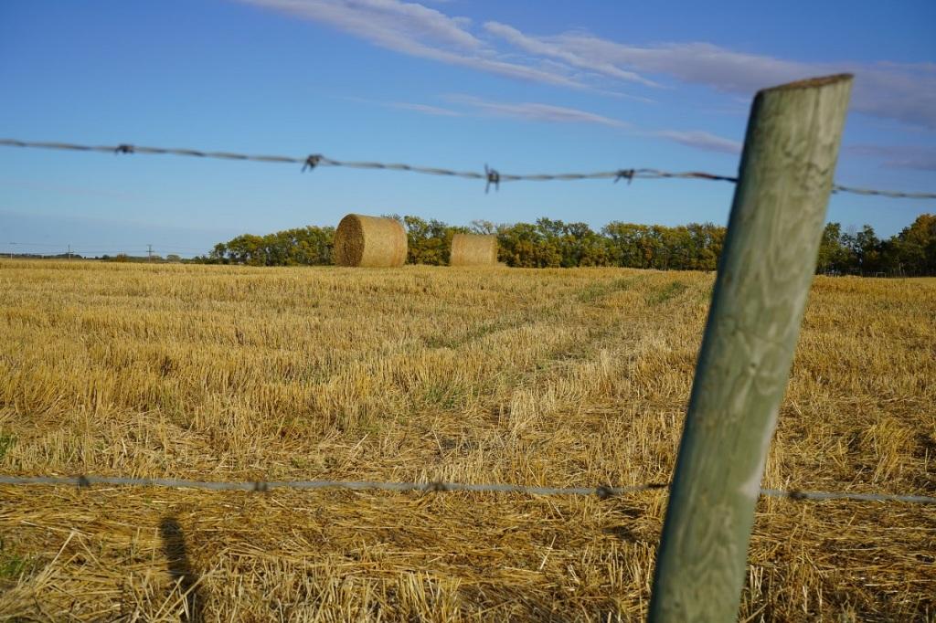 Giant Haystacks Prairies Nurin Merchant Simergphotos