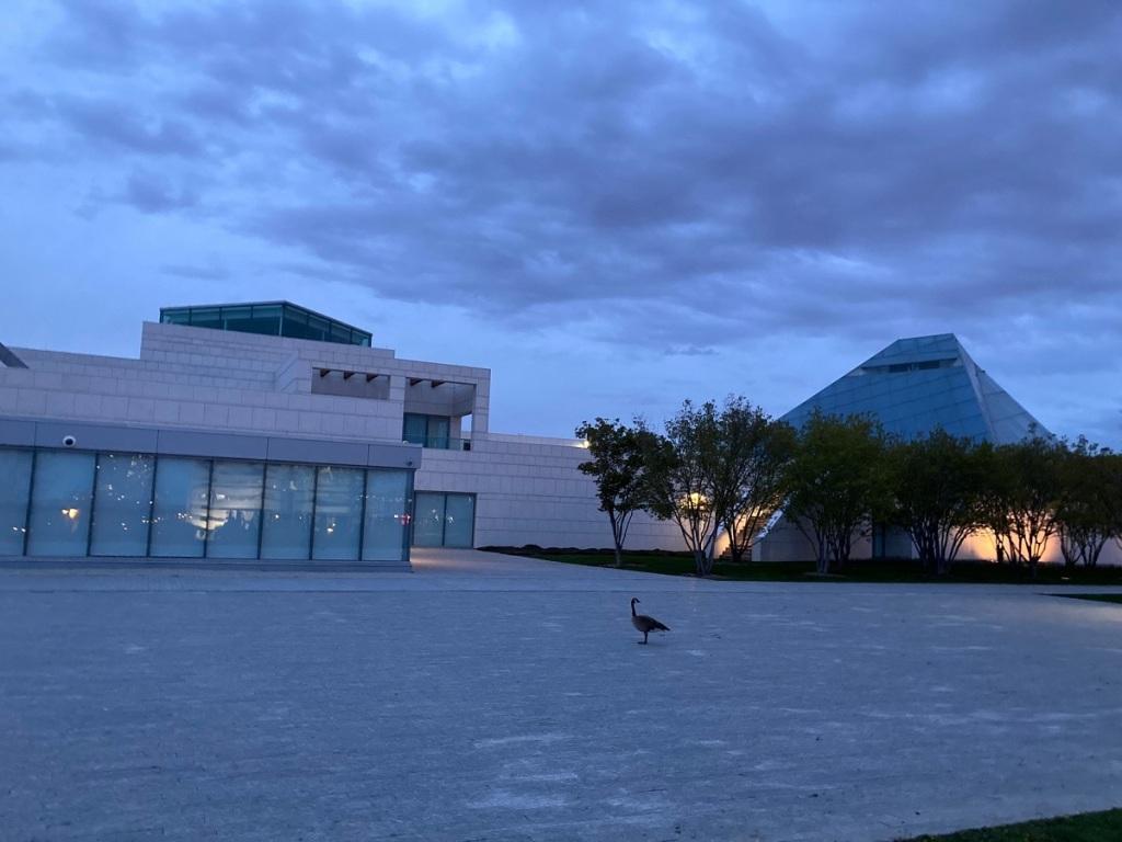 Ismaili Centre Toronto birth of 6 new goslings, Simergphotos Malik Merchant