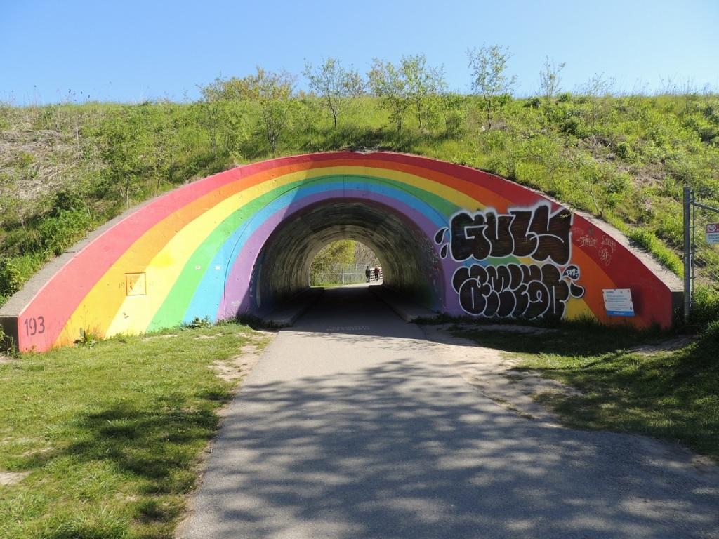 East Don Trail Charles Sauriol Conservation Area Malik Merchant Simerg Photos Simergphotos Toronto's Parks Forests Trails and Gardens