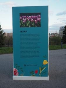 Tulip panel at the Aga Khan Park.