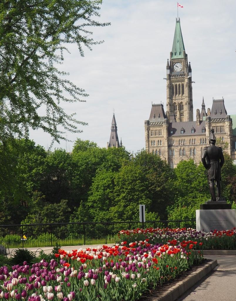 Tulips Commissioners Park Ottawa Dows Lake Major Hills Park and Rideau Falls