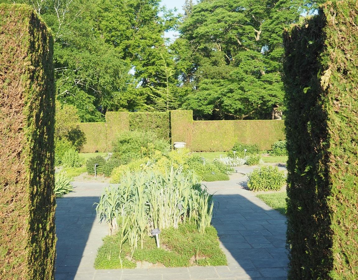 Herb Garden, Niagara Botanical Gardens, Simerg Simergphotos, Photo of the Day Malik Merchant