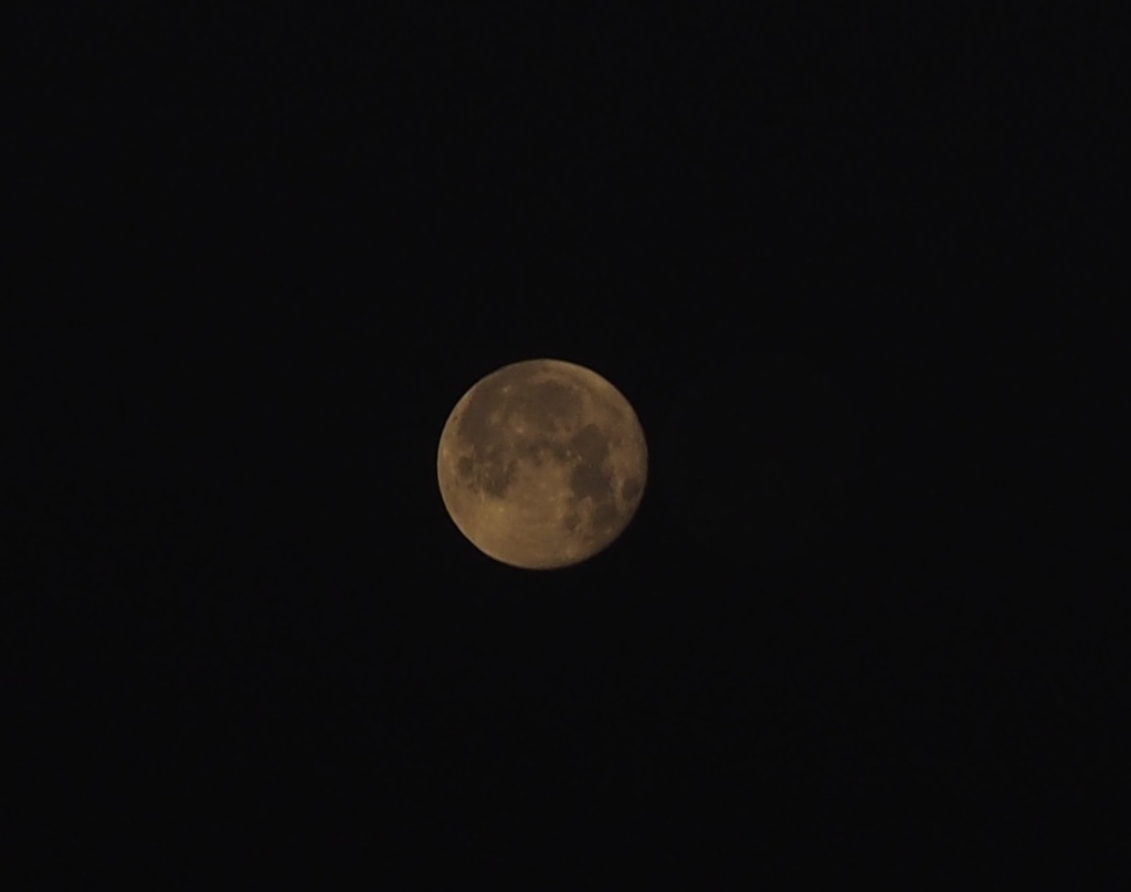 Moon (Waning Gibbous), illumination 99.1% over Aga Khan Park, May 27, 2021