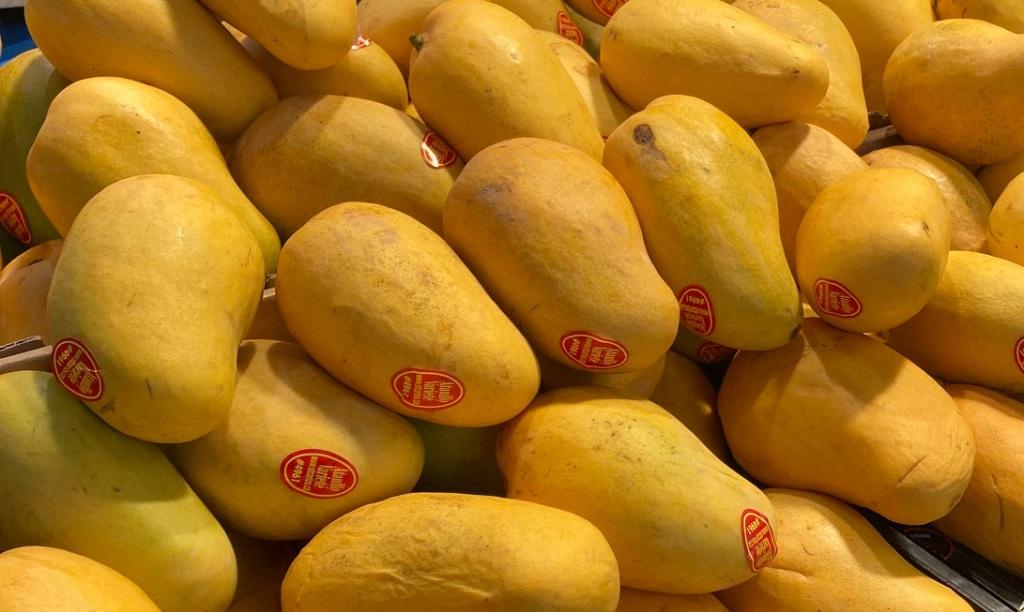 Ataulfo mangoes St Lawrence Market. Simerg Photos