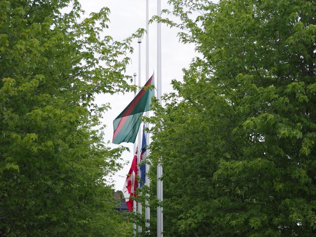 Flags at Aga Khan Park fly at half-mast