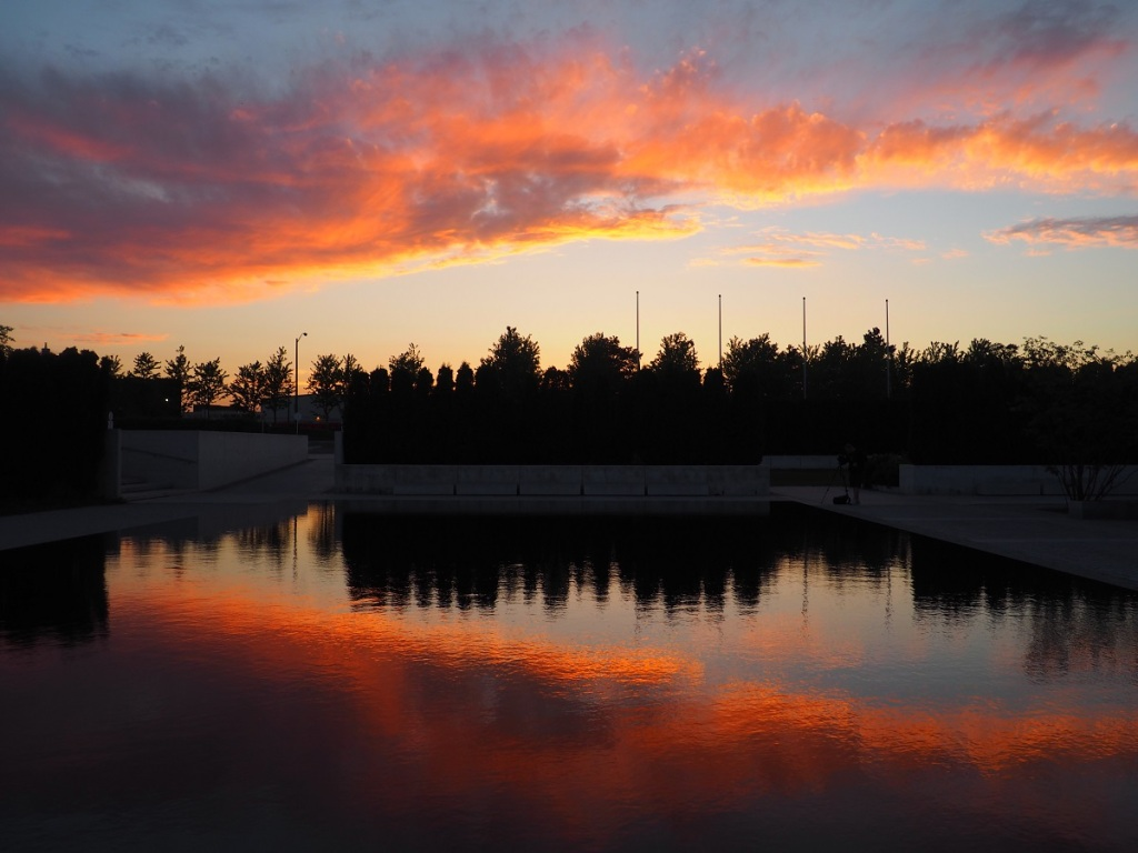 Reflection of the sky on a pond at Aga Khan Park, shortly after sunset on June 17, 2021. Photo of the Day Simergphotos